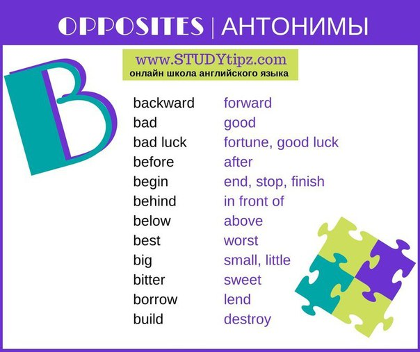 ANTONYMS COLLECTION